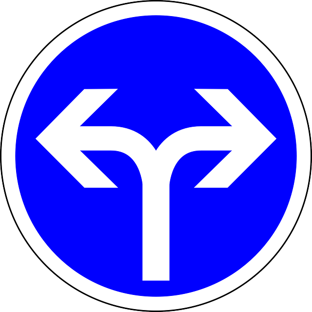 go-left-or-right