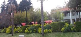 Пролетна разгледница од Преспа