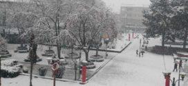 Снегот ја остави Преспа без електрична енергија
